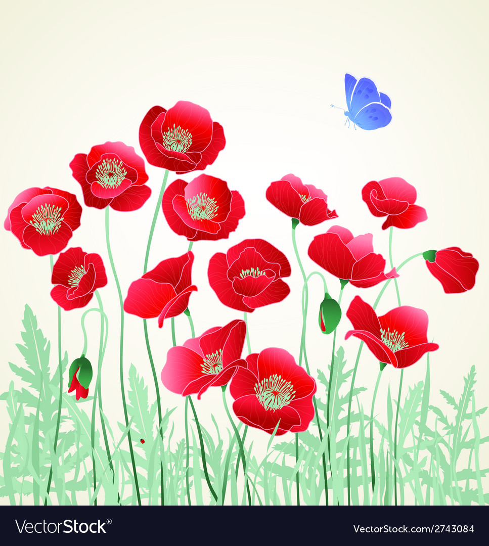 Poppies with blue butterfly vector | Price: 1 Credit (USD $1)