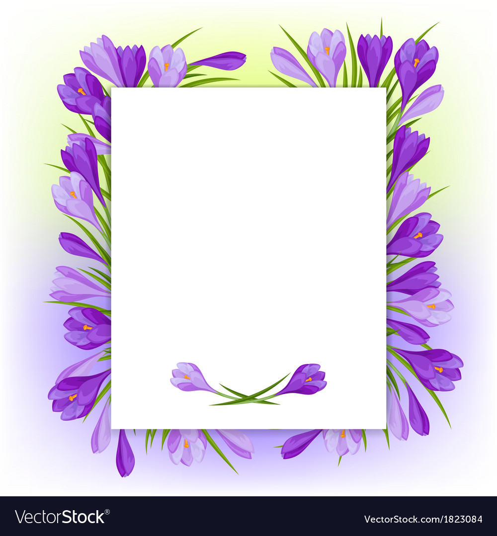 Spring flowers crocus natural background vector | Price: 1 Credit (USD $1)