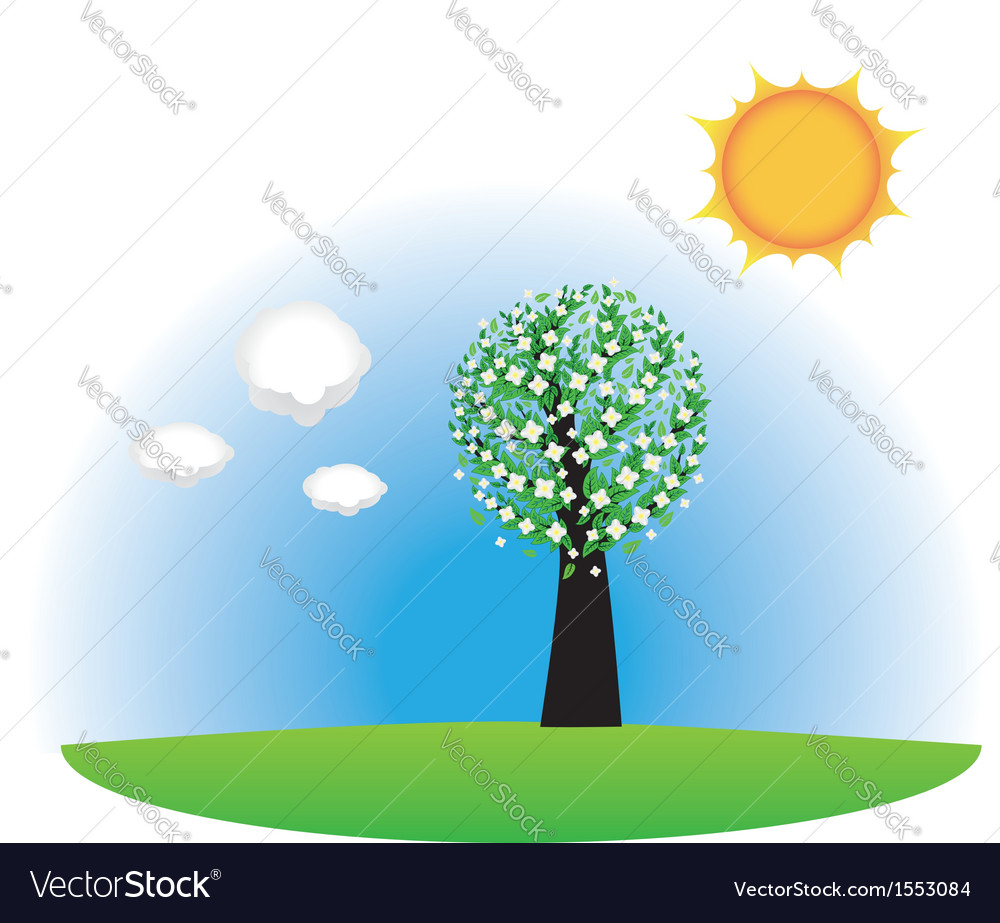 Springtime tree vector | Price: 1 Credit (USD $1)