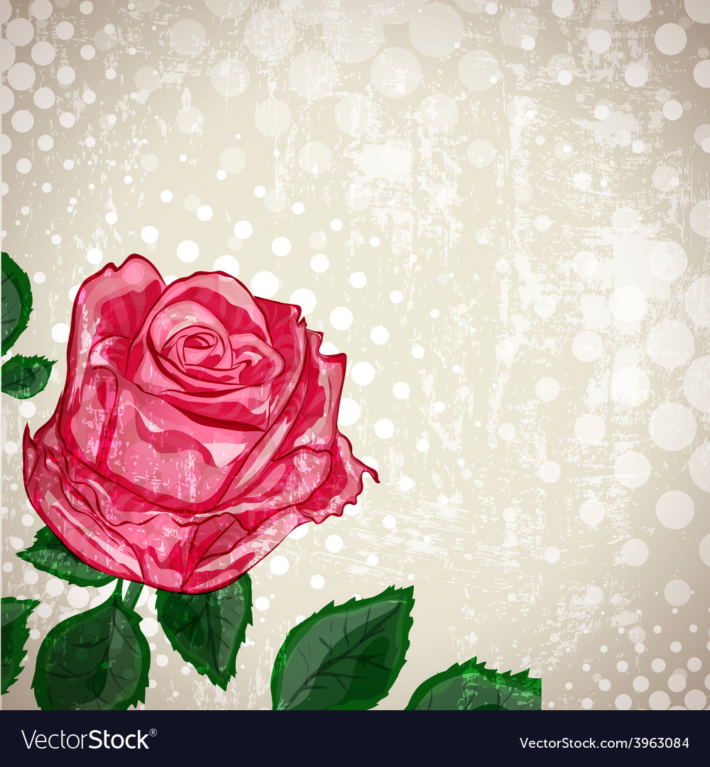 Vintage abstract rose vector | Price: 1 Credit (USD $1)