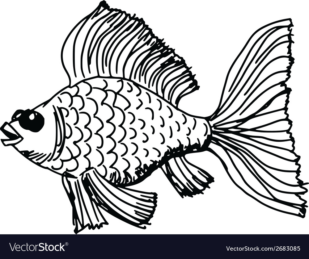 Goldfish vector   Price: 1 Credit (USD $1)
