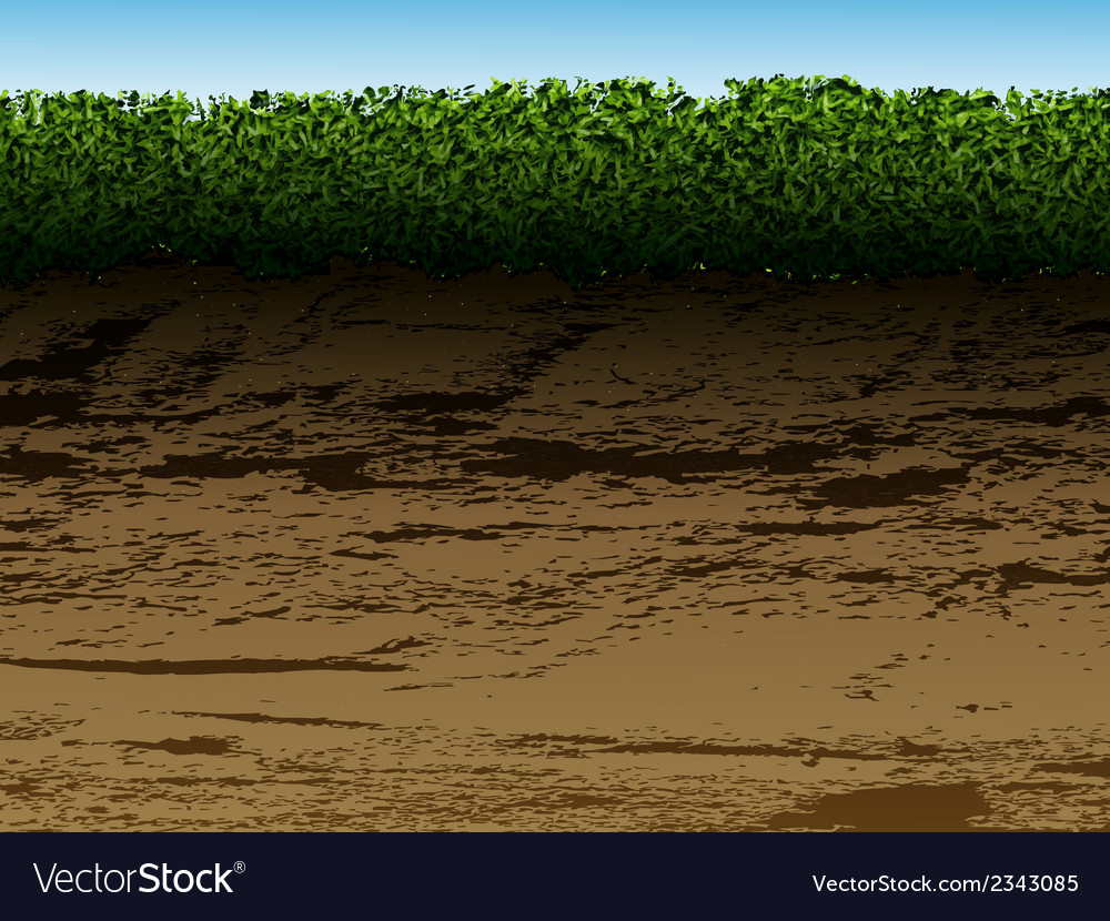 Soil with grass vector | Price: 1 Credit (USD $1)