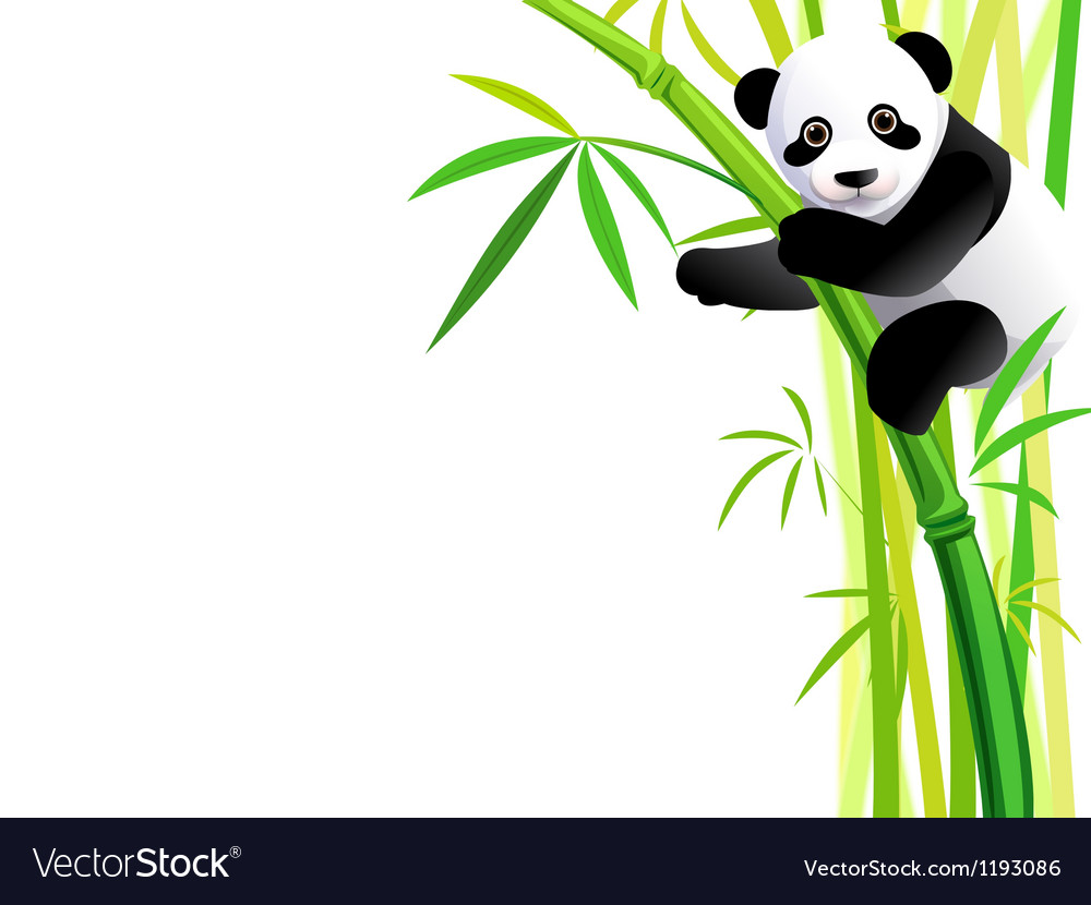 Panda 041 vector | Price: 1 Credit (USD $1)