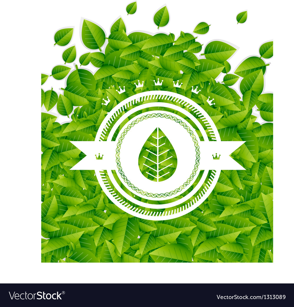 Spring  summer green leaves nature background vector | Price: 1 Credit (USD $1)