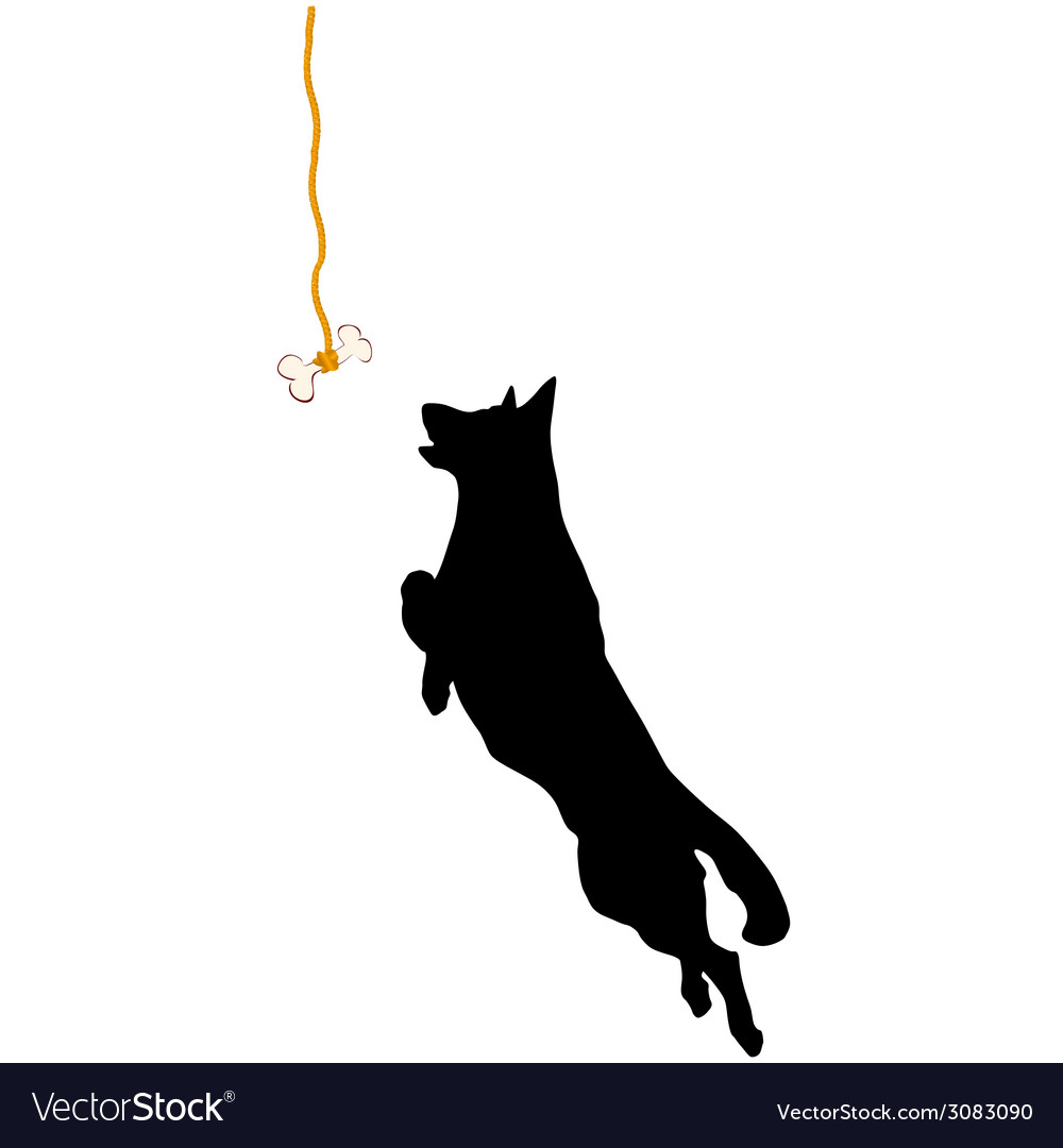 Sheperd jump for a bone vector | Price: 1 Credit (USD $1)