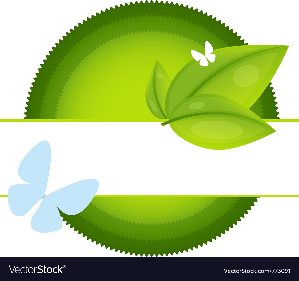 Eco label with leaf and butterfly vector | Price: 1 Credit (USD $1)