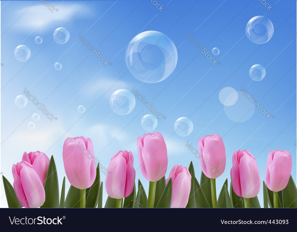 Tulips bckground with blue sky vector | Price: 1 Credit (USD $1)