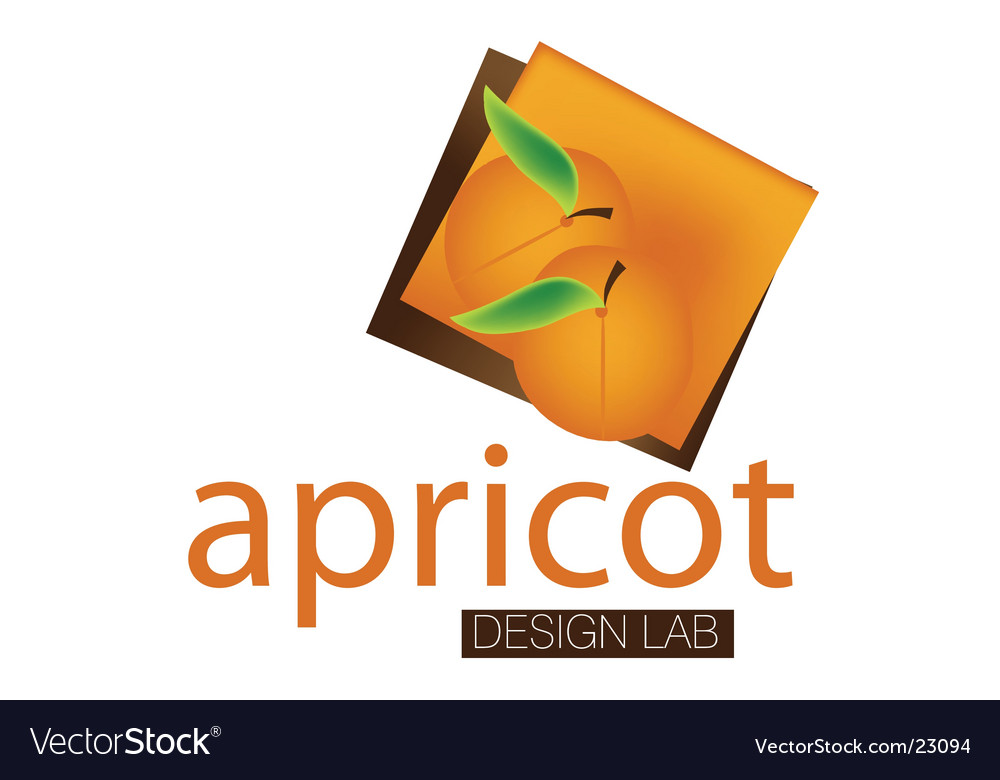 Apricot lab logo vector | Price: 1 Credit (USD $1)