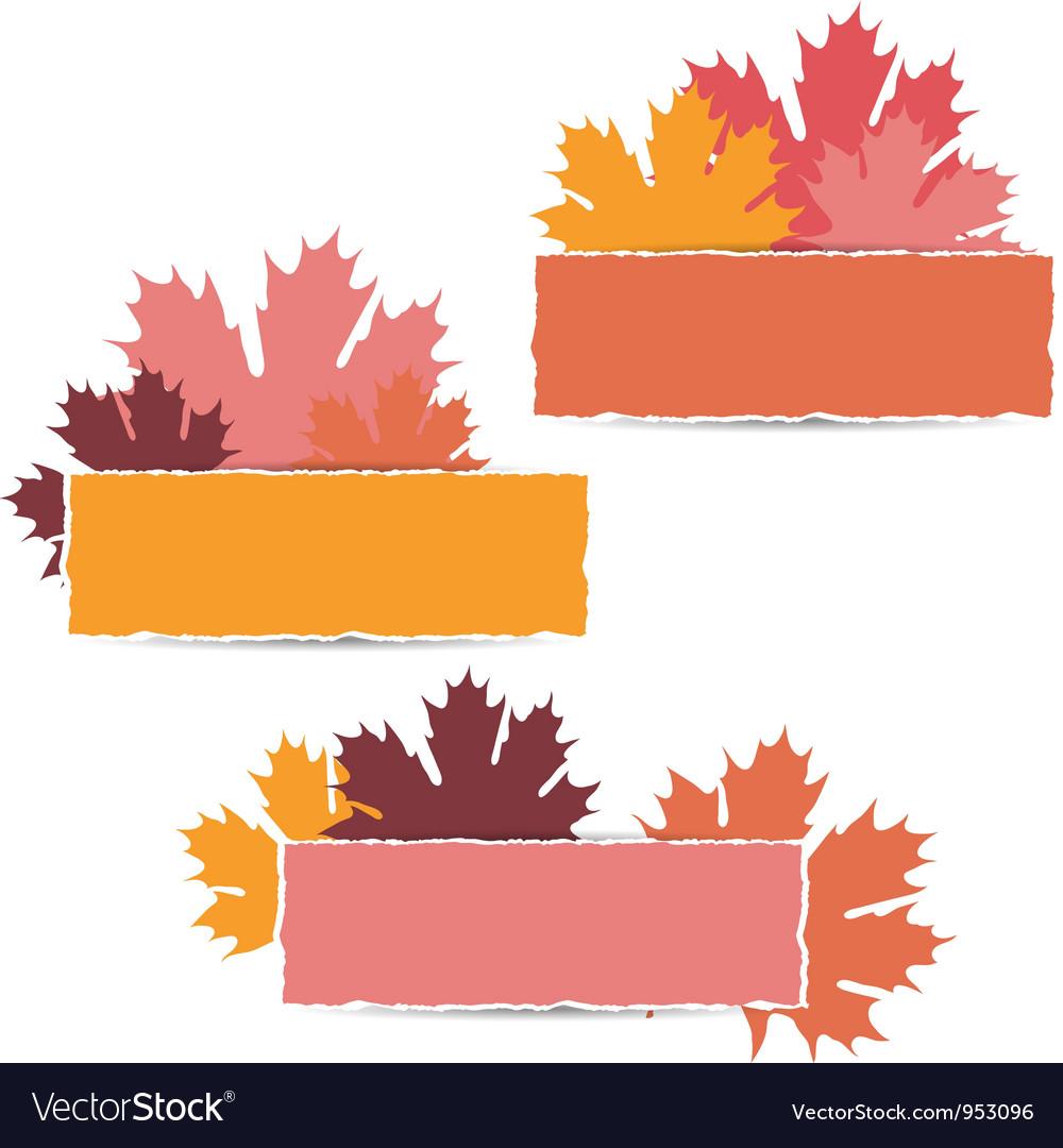 Autumn maple leaves design vector | Price: 1 Credit (USD $1)