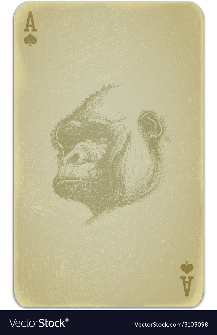 Poker card with gorilla vector | Price: 1 Credit (USD $1)