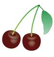 Cherry 1 v vector