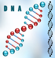 Dna strand vector