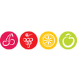 Fruits icon vector