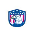 American bald eagle head side stars retro vector