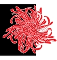Red and black flower vector