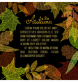 Bright autumn leaves on black background vector