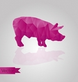 Abstract triangular pig vector