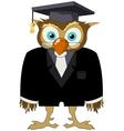 Owl graduate vector