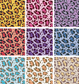 Skin textures of leopard vector