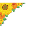 Sunflowers and leaves vector