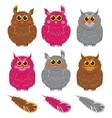 Owls pink brown gray plumage vector