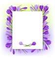 Spring flowers crocus natural background vector