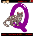 Letter q for quoll cartoon vector