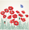 Poppies with blue butterfly vector