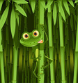 Curious frog vector