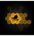 Black bee symbol and colorful honeycomb design vector