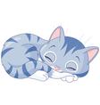 Kitten vector