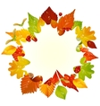 Autumn frame with fall leaf vector