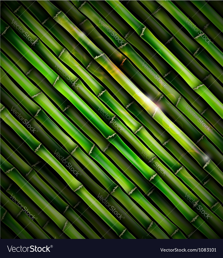 Background with bamboo vector | Price: 1 Credit (USD $1)