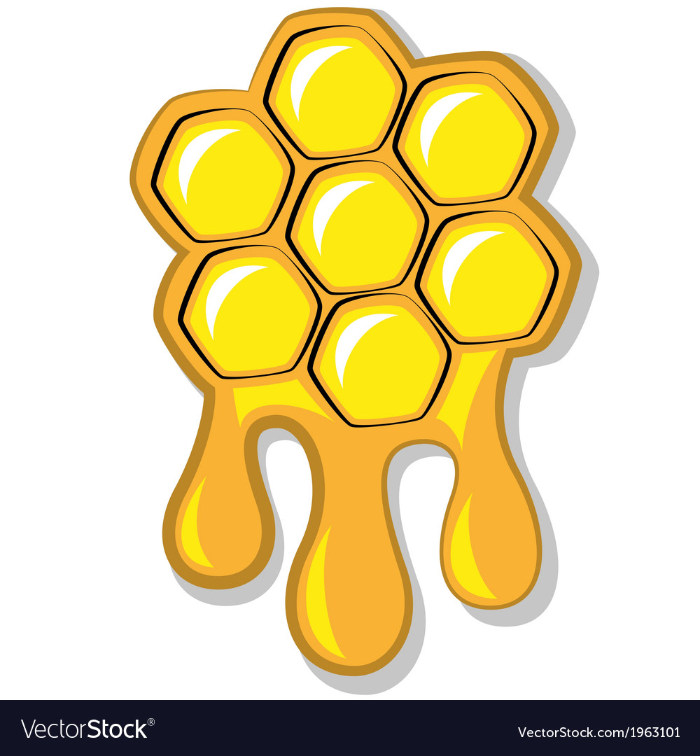 Bees honeycomb full of honey vector | Price: 1 Credit (USD $1)