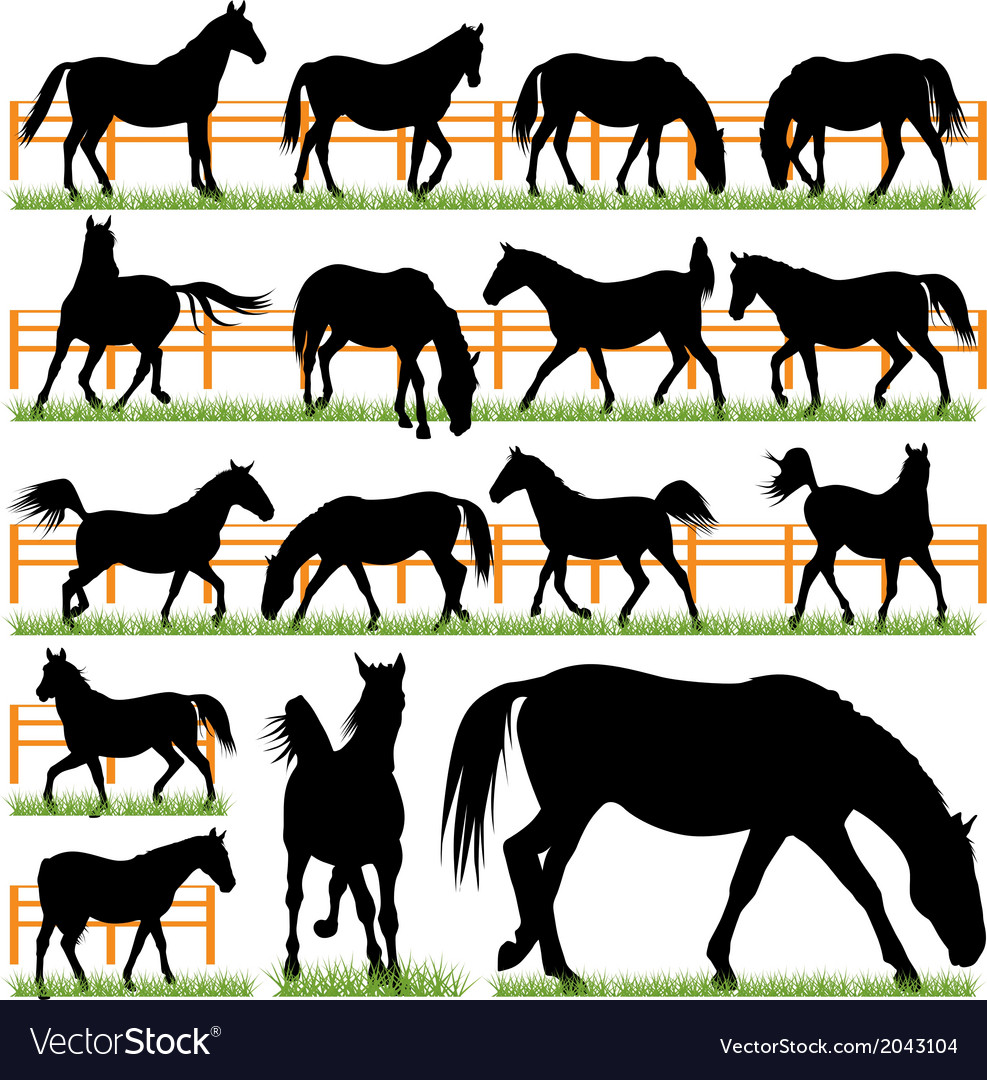 Set of 16 horses silhouettes vector | Price: 1 Credit (USD $1)