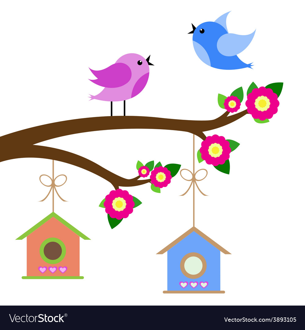 Birds colorful and birdhouse on tree branches vector | Price: 1 Credit (USD $1)