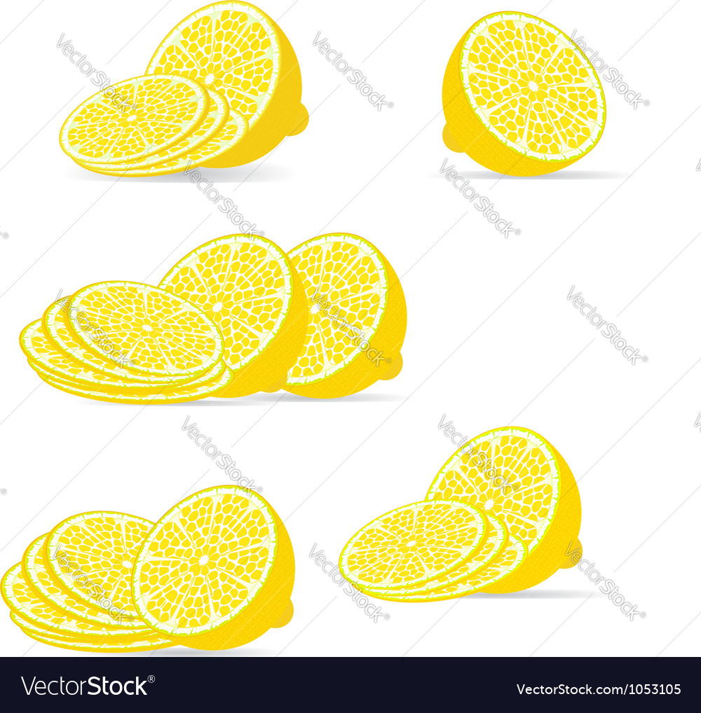 Sliced lemon vector | Price: 1 Credit (USD $1)