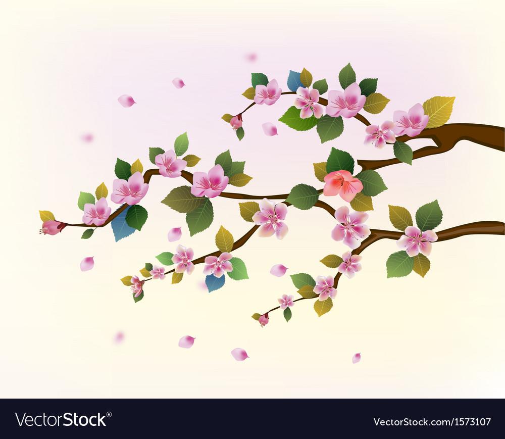 Spring all wakes up flowers sakura vector | Price: 1 Credit (USD $1)