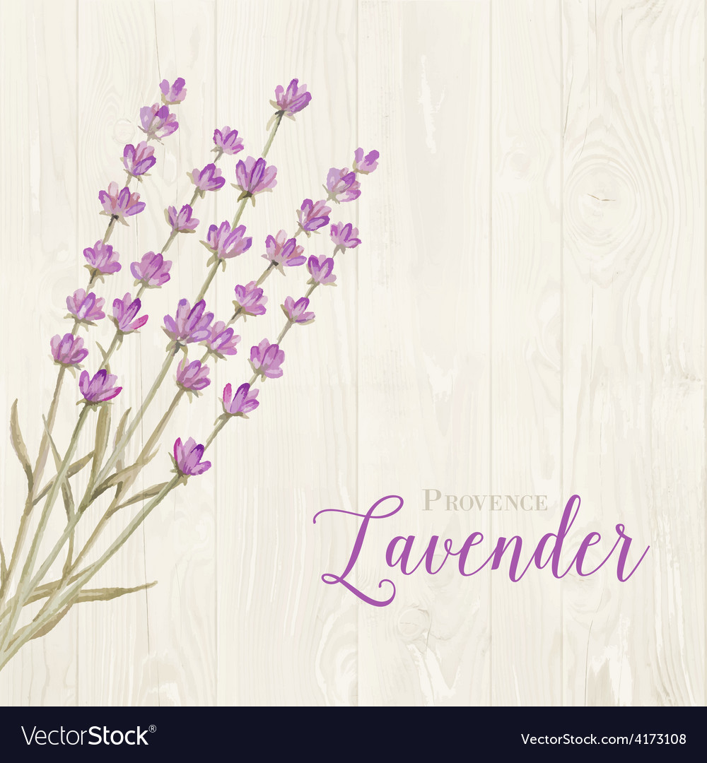 Laveder over wooden panels vector | Price: 1 Credit (USD $1)