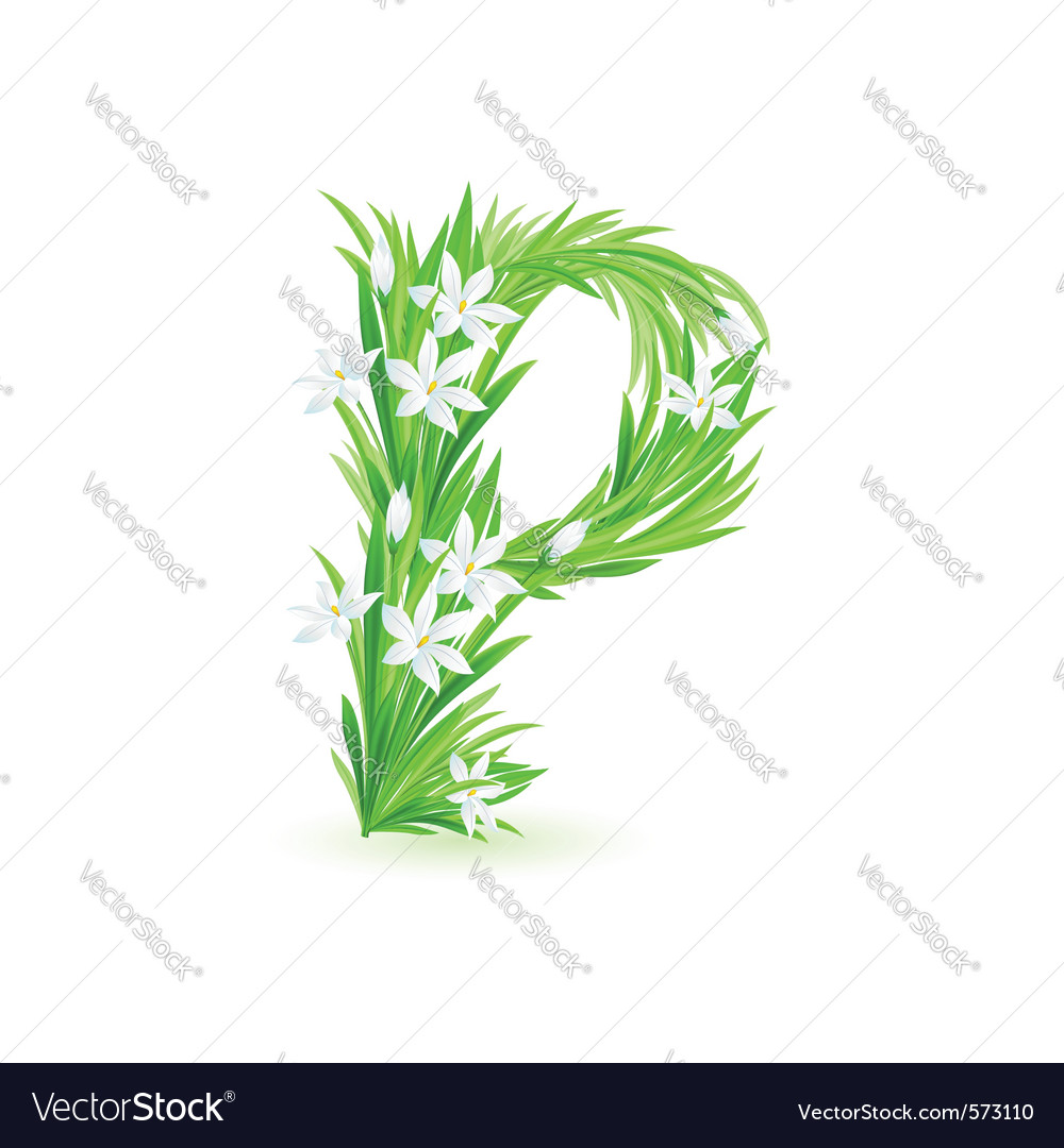 Spring flowers alphabet p vector | Price: 1 Credit (USD $1)