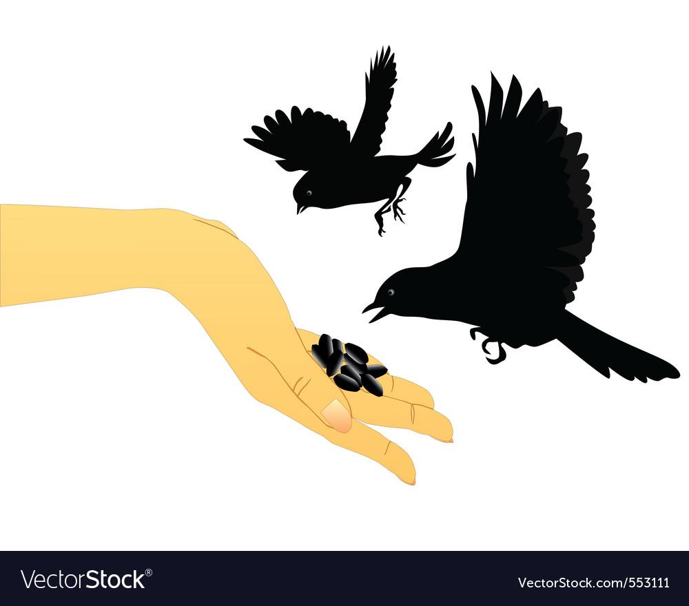 Bird feeding vector | Price: 1 Credit (USD $1)