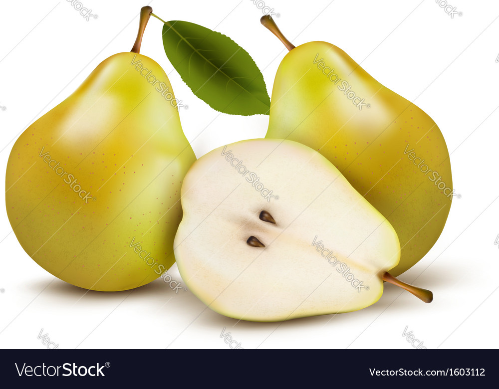 Fresh pears isolated on white vector | Price: 1 Credit (USD $1)