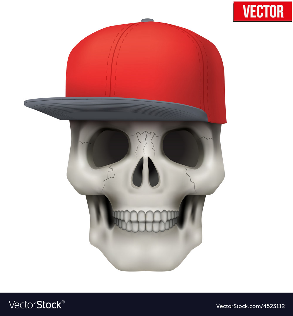 Human skull with rap cap on head vector | Price: 1 Credit (USD $1)