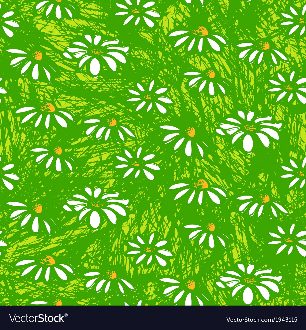 Pattern with hand drawn daisy flowers vector | Price: 1 Credit (USD $1)