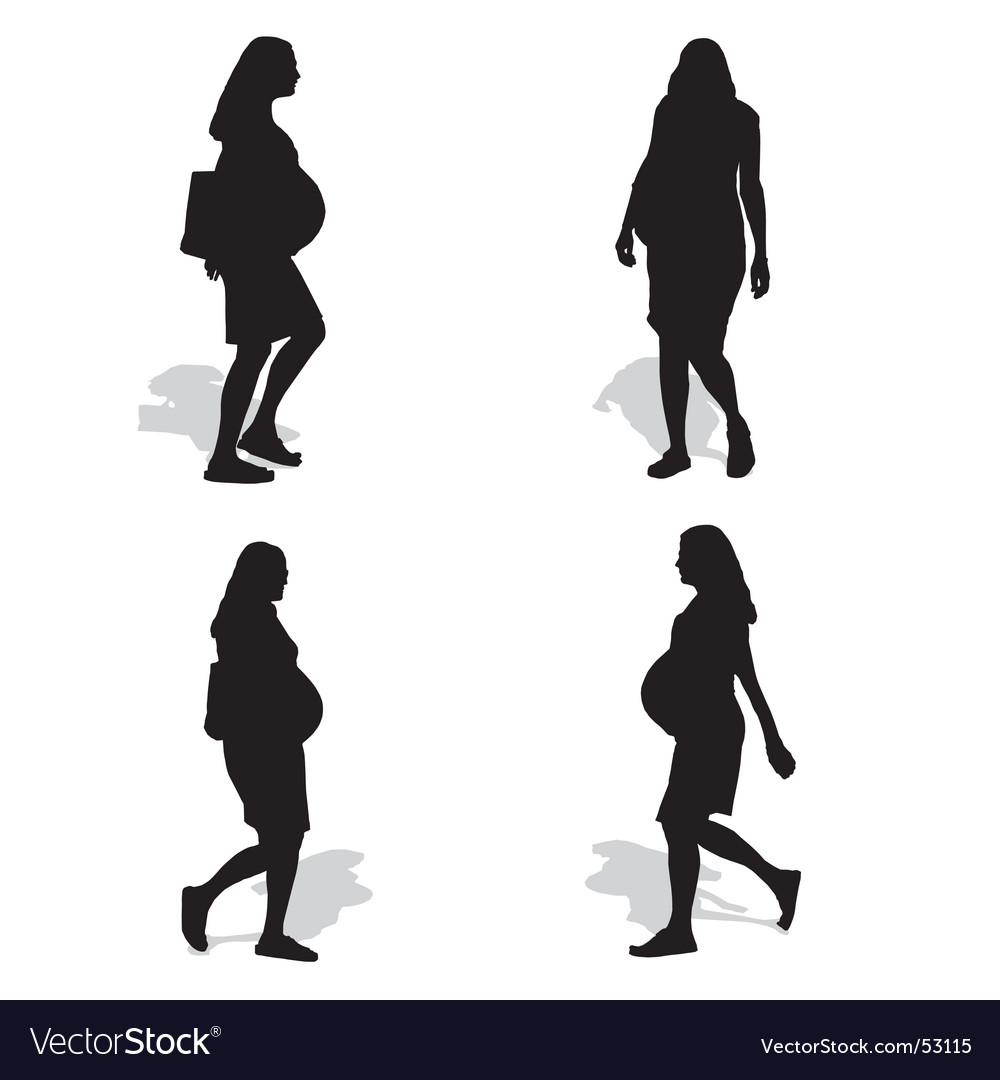 Pregnant woman silhouettes vector   Price: 1 Credit (USD $1)