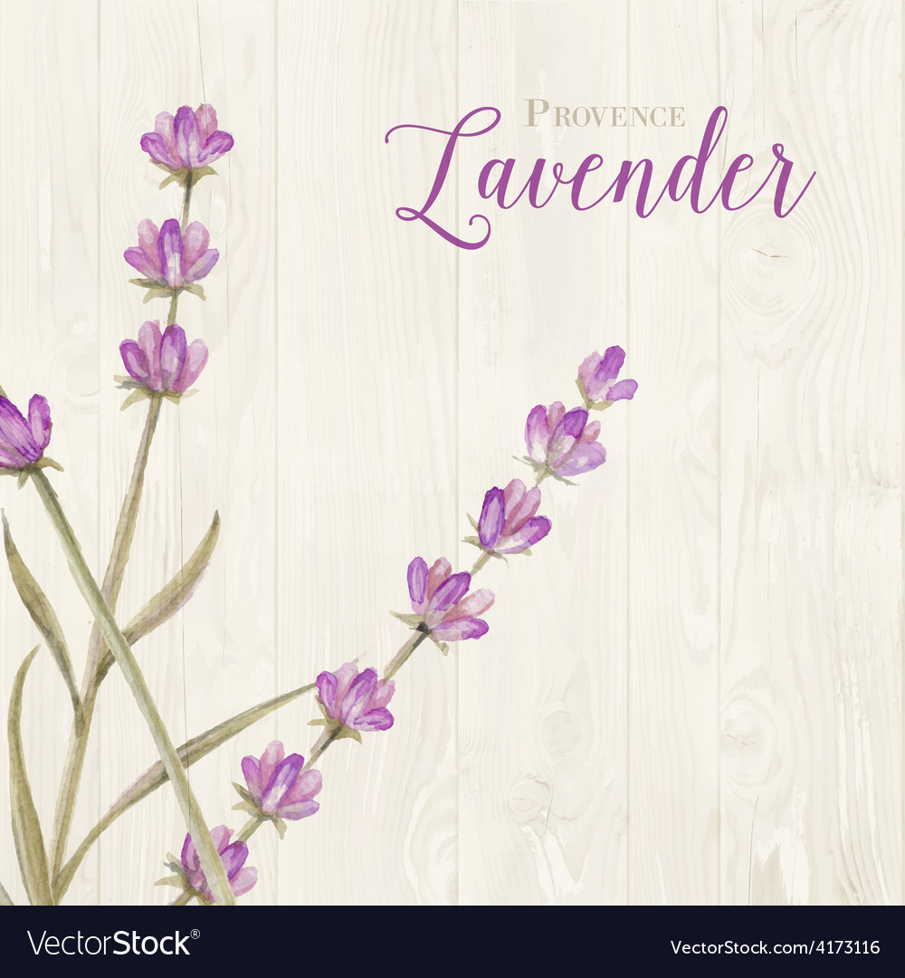 Laveder over wooden panels vector   Price: 1 Credit (USD $1)