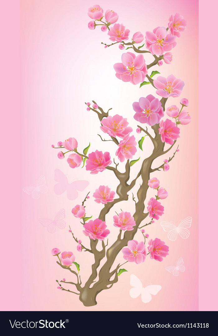 Flowering branch vector | Price: 1 Credit (USD $1)