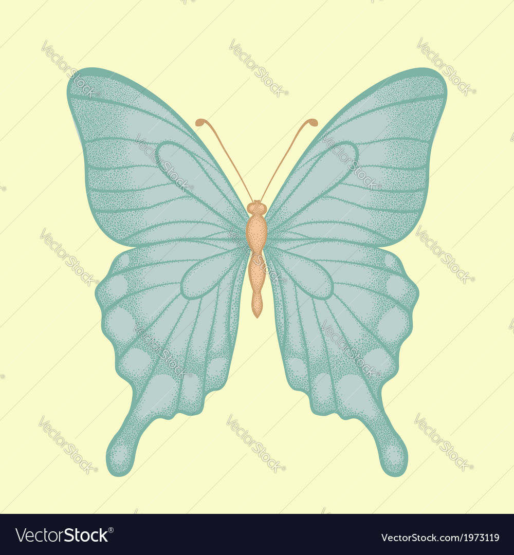 Butterfly in a hand-drawn graphic style in vintage vector | Price: 1 Credit (USD $1)