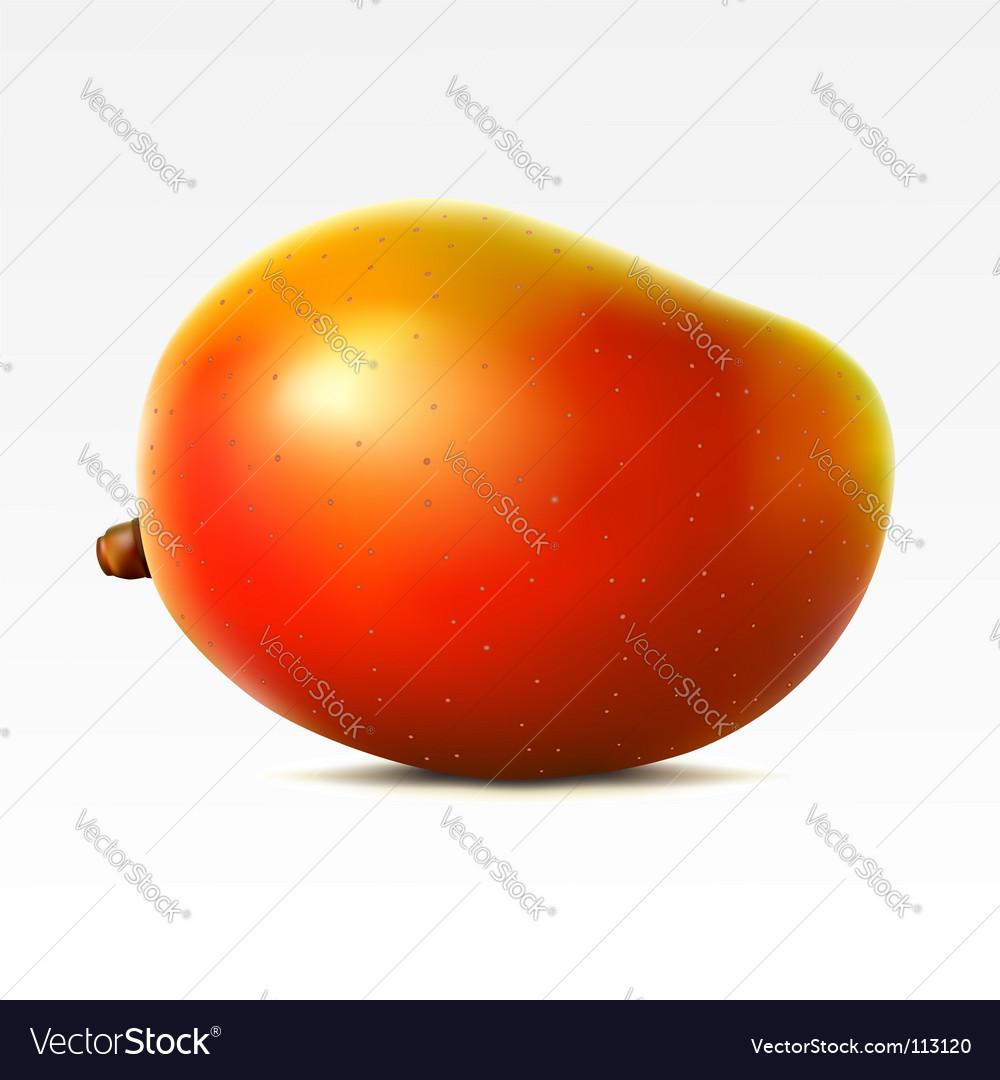 Mango vector   Price: 1 Credit (USD $1)