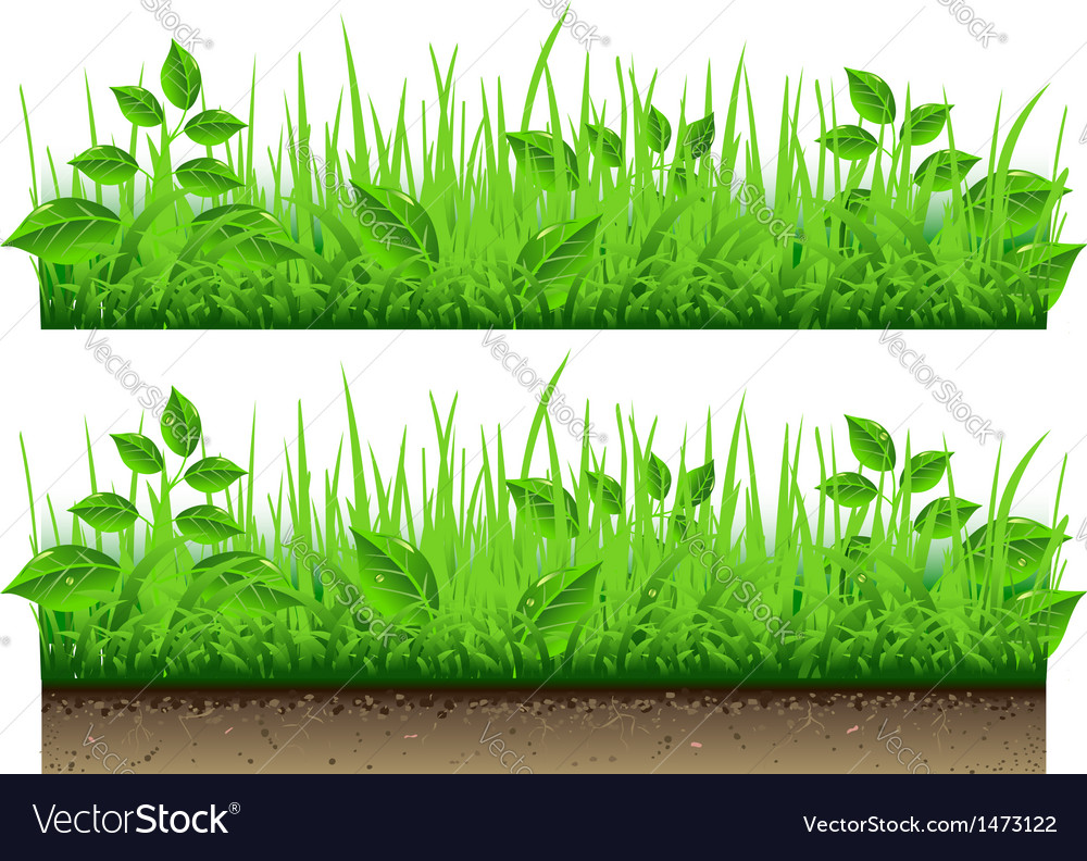 Grass border isolated on white background vector | Price: 1 Credit (USD $1)
